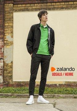 Tilbud fra Mode i Zalando kuponen ( Over 30 dage)