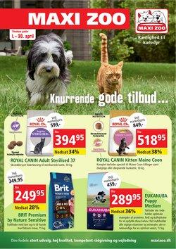 Tilbud fra Petworld i Petworld kuponen ( Udløbet)