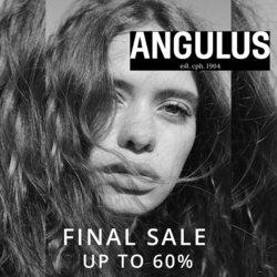 Tilbud fra Angulus i Angulus kuponen ( 7 dage tilbage)