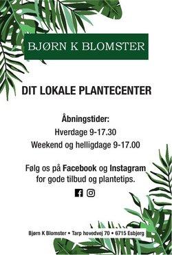 Bjørn K Blomster katalog ( 9 dage tilbage )