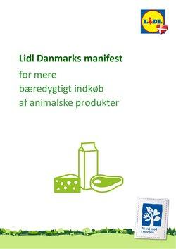 Lidl katalog i Esbjerg ( Over 30 dage )