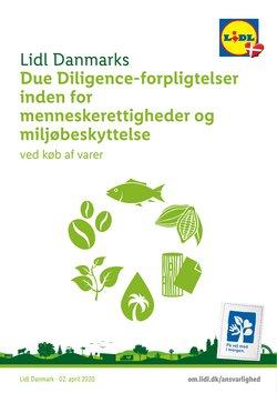 Lidl katalog i Odense ( Over 30 dage )