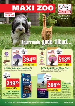 Maxi Zoo katalog i Odense ( 9 dage tilbage )