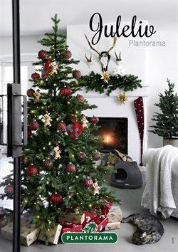 Tilbud fra Jul i Plantorama kuponen ( Over 30 dage)