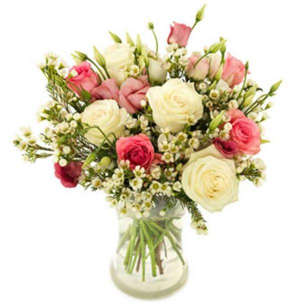 Bedårende roser på tilbud til 229 kr.